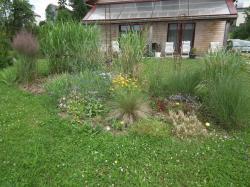 jardin 11 07 2012 n°1